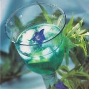 Curaçao au citron vert, carte postale photo d'art