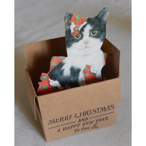 Carte 3 d joyeux no l le chat sort de sa boite - Carte de voeux pop up ...