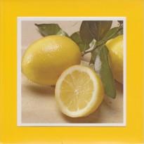 Les citrons, carte cadre décoratif