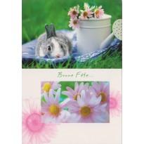 Bonne Fête, carte postale avec un lapin tout doux