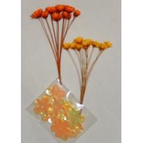 Immortelles orange et jaune en miniature pour scrapbooking et créations cartes.
