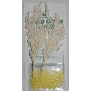 Gerbes blanches miniatures et coeurs de fleurs jaunes pour créations scrapbooking.