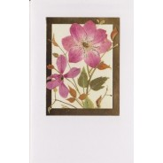 Des Clématites roses à coeur d'or pour vos cartes de voeux