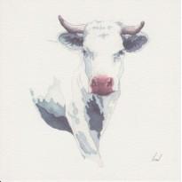 La Vache, carte aquarelle - Carterie Poitiers