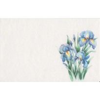 4 carte Iris, Roses et  Bouquets fleurs aquarelle