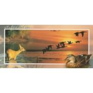 Vol de canards colverts au bord de l'eau sur carte postale.