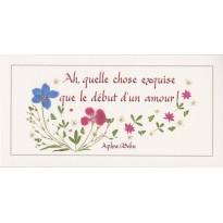 Le Début d'un Amour, citation d'Aphra Behn