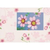 Fleurs de cosmos dans les tons rosés, carte postale photo