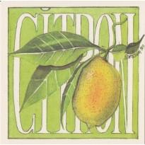 Le Citron, grande carte Aquarelle de Geneviève Vallin