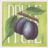 La Prune, grande carte Aquarelle de Geneviève Vallin