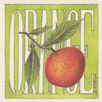 L'orange, grande carte Aquarelle de Geneviève Vallin