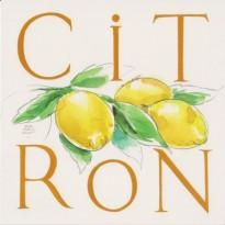 Citrons, Carte Aquarelle de Jean-Marie Drouet