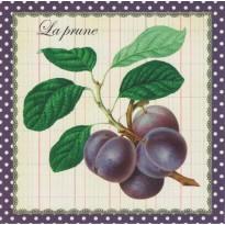 """La Prune : carte dessin """"naturaliste"""" de fruits"""