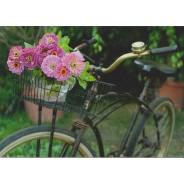 Vélo fleuri, carte postale photo de zinias