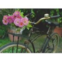 La bicyclette fleurie d'un bouquet de zinias, carte postale photo d'art