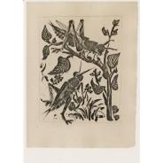 """""""La Sauterelle"""", Pablo Picasso, reproduction sur carte postale"""