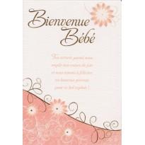 Bienvenue Bébé, carte de félicitations avec texte