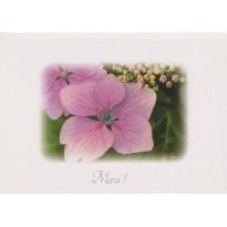 Un Merci sur Fleur d'Hortensia