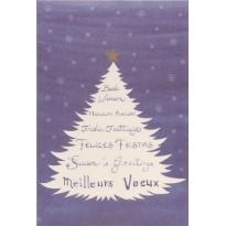 Meilleurs Voeux pour faire le tour du monde, carte de Noël en 6 langues