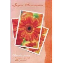 Carte Joyeux Anniversaire et Amicales Pensées