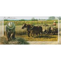 Les Moissons, carte postale sur les travaux des champs.