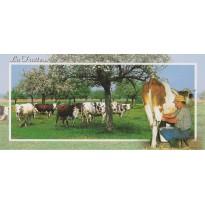 La Traite, extrait de la vie rurale sur carte postale.