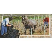 Carte Labour de la Vigne