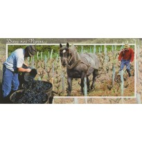Carte Travail dans la Vigne : passage de la houe.